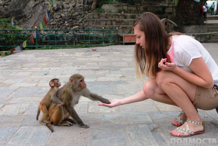 Авторката на текста общува с маймуни.